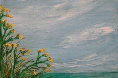 windybeach