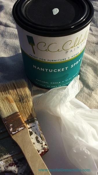 CeCe-Paint Shot