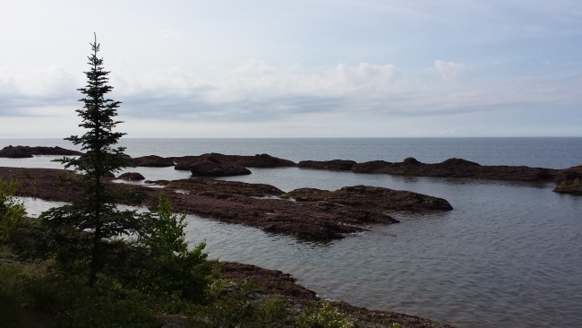 Eagle Harbor Shoreline